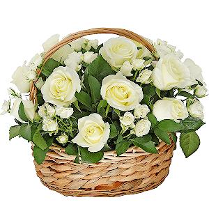 Интернет магазин садовых цветов